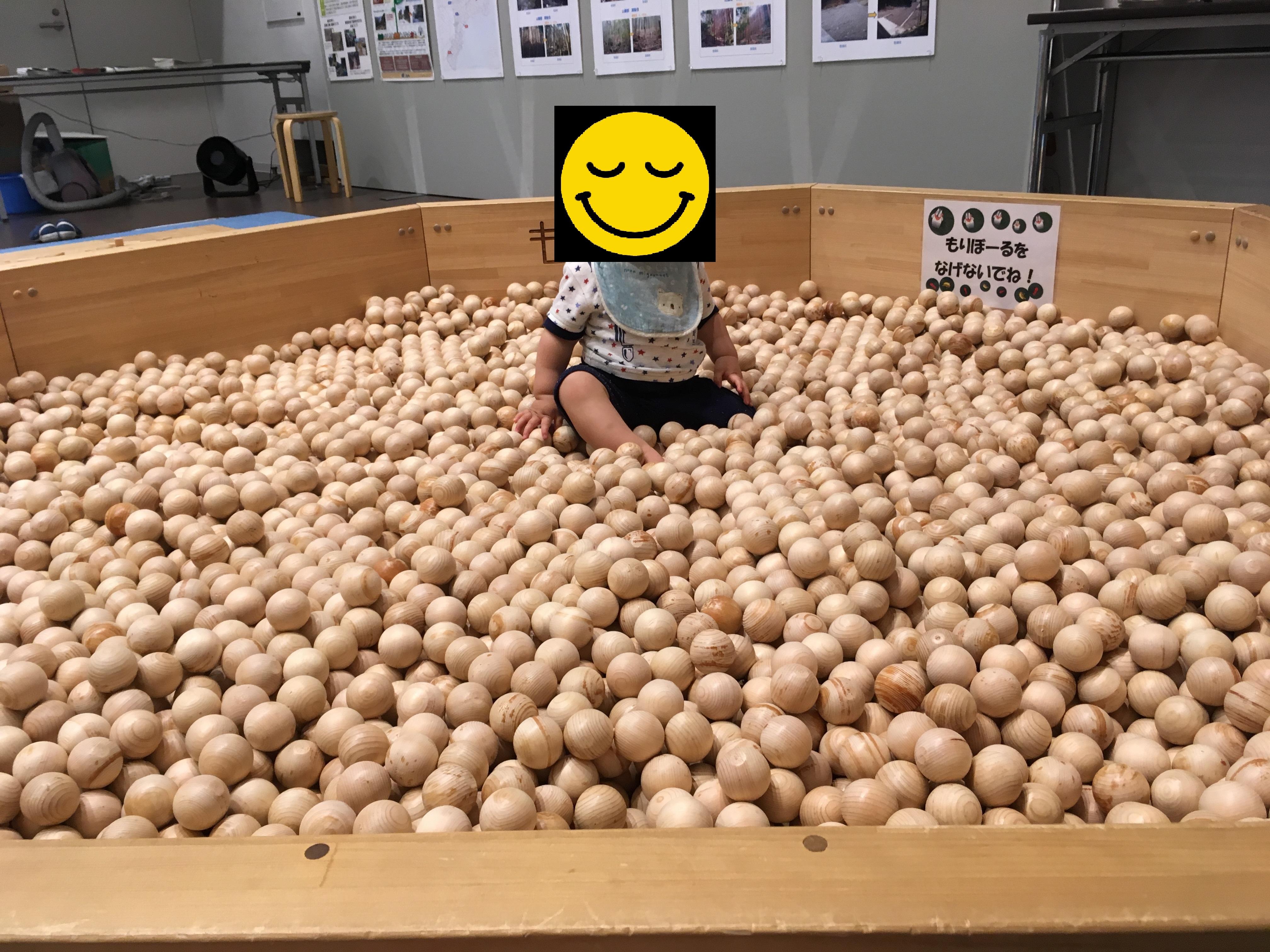 MieMu三重県総合博物館