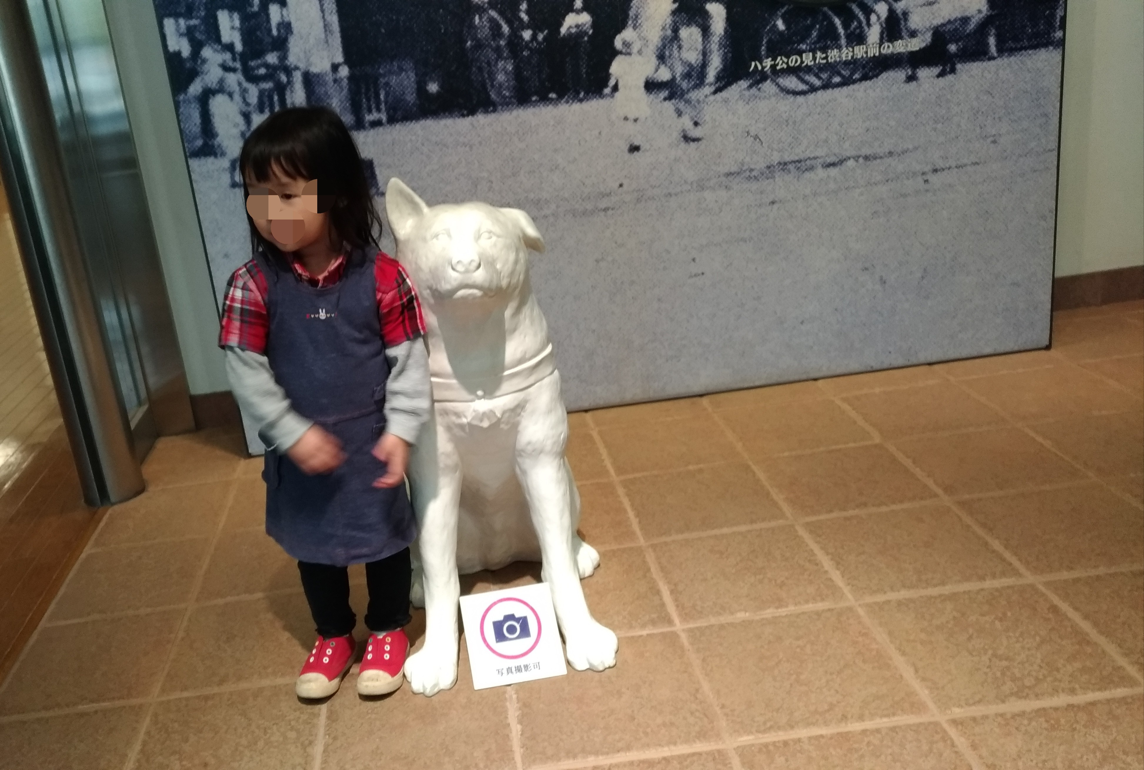 渋谷区郷土博物館