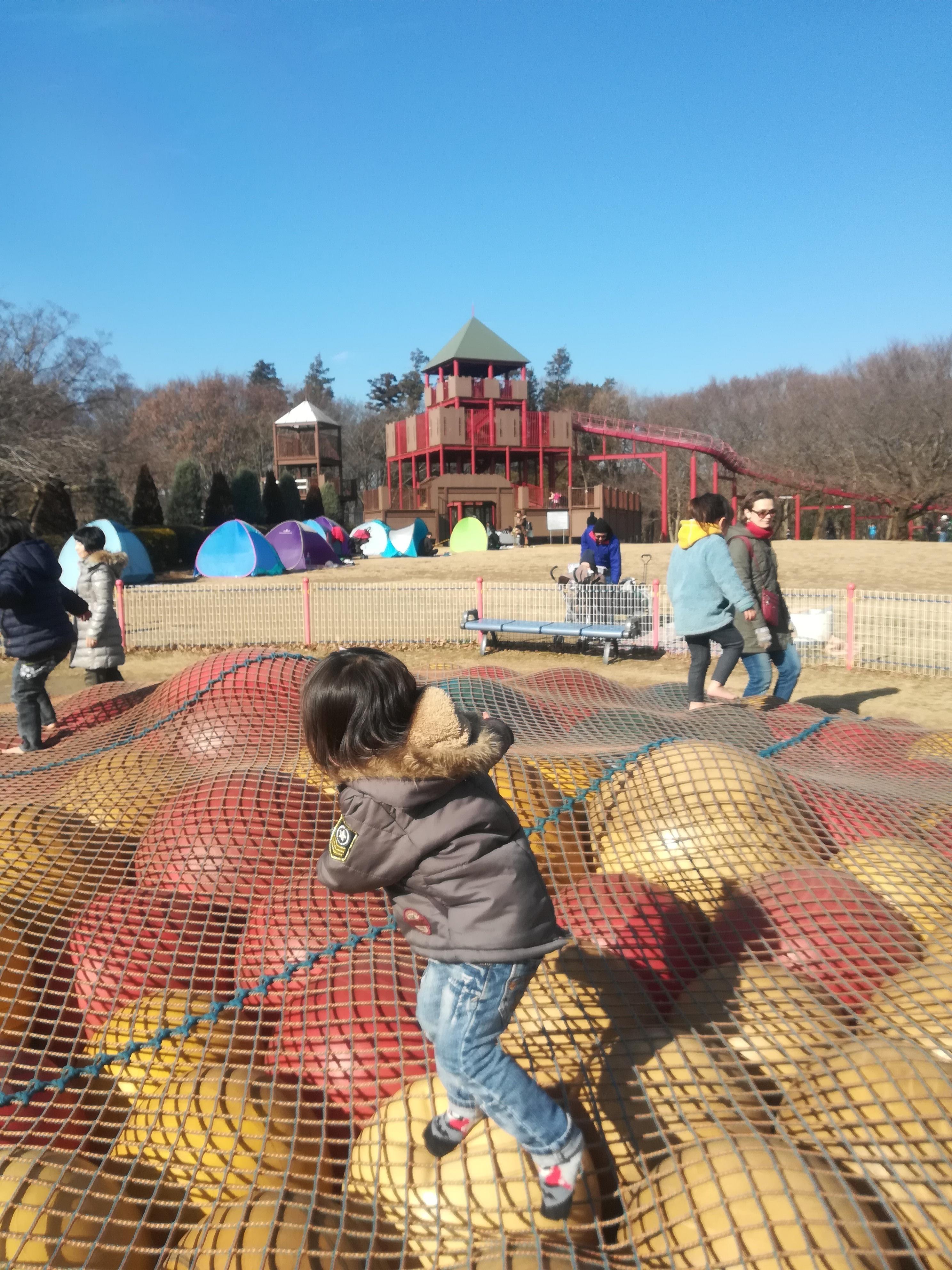 アスレチックが豊富、広々した公園!