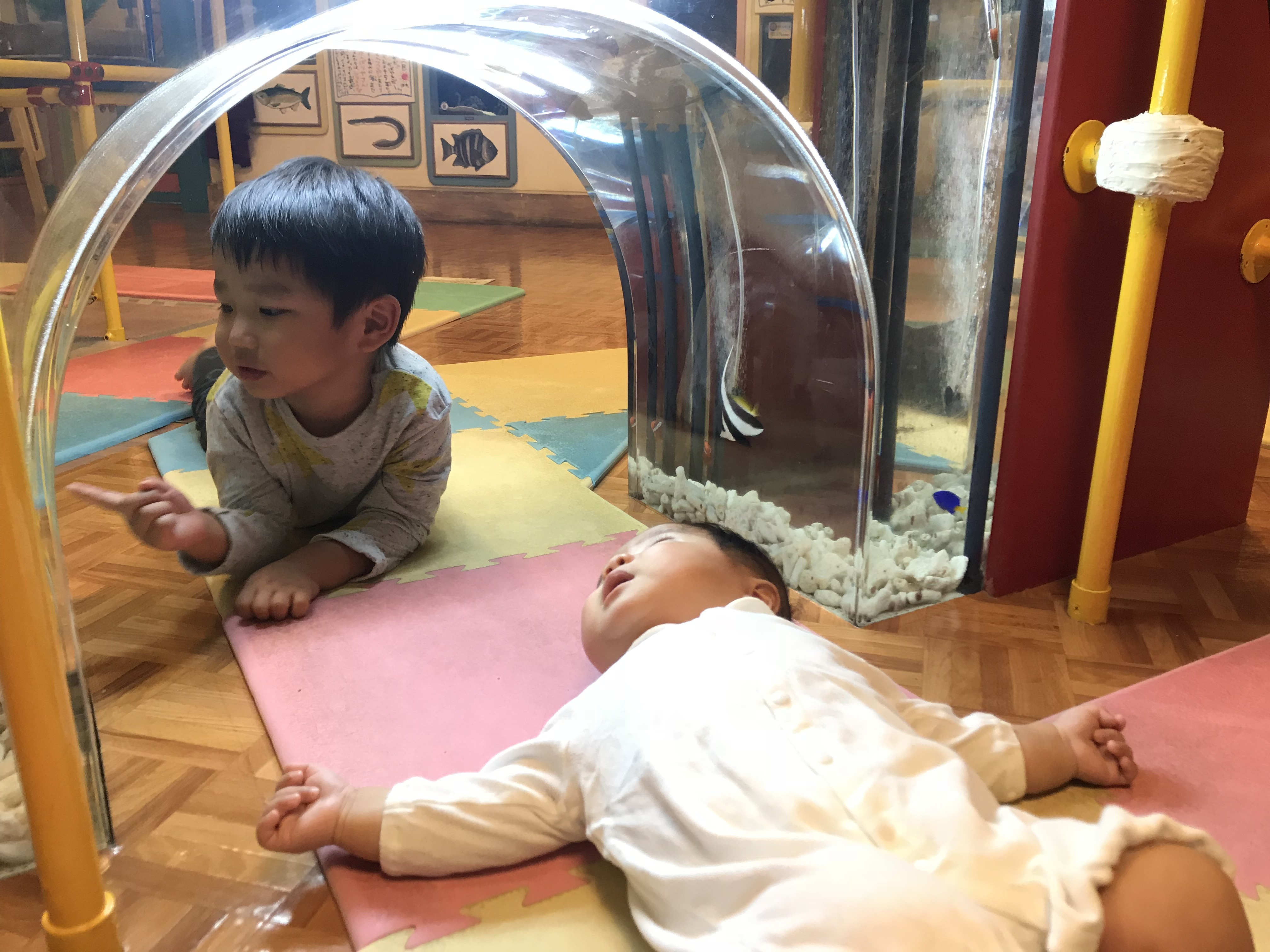 中華街では貴重な乳児向け設備ありの水族館